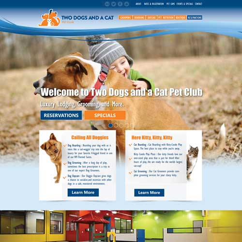 two-dogs-and-a-cat-web-design